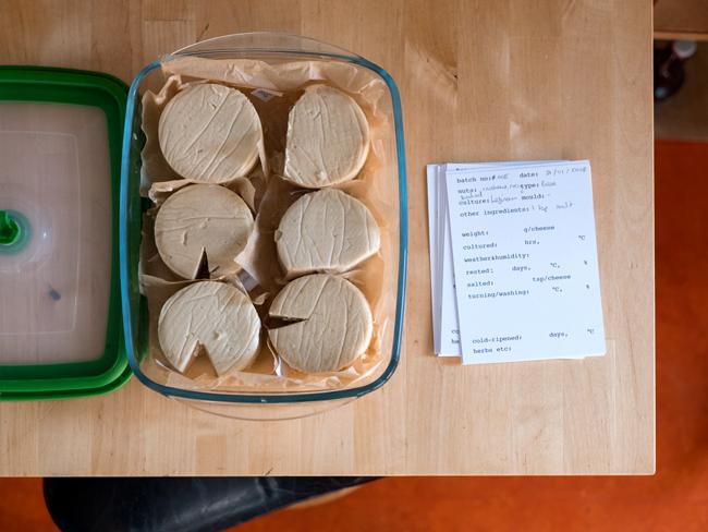 Foto van zes proefkaasjes in een open glazen bewaarbak op een houten tafel. Naast de bak met kaasjes een stapel archiefkaartjes met de precieze eigenschappen van de kaas.