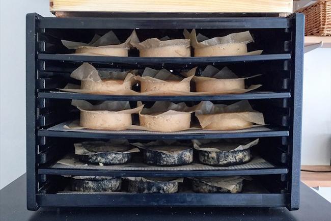Vijf lades van negen kaasjes die liggen te rijpen in de Excalibur dehydrator. Drie lagen zijn gewone cashew-camembert, twee as-camembert.